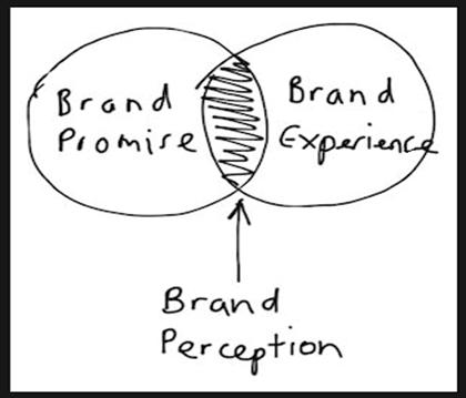 brand perception